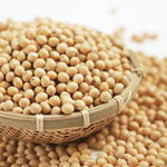 九州産大豆ふくゆたか大粒一等級