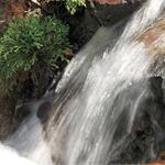 五木村の清冽な伏流水